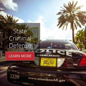 ad_type_3_banner-300x300-state-criminal-defense